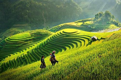 phan tích 8 cau dàu bài tho viẹt bác của tác giả tó hũu tuyet hay - Phân tích 8 câu đầu bài thơ Việt Bắc của tác giả Tố Hữu tuyệt hay