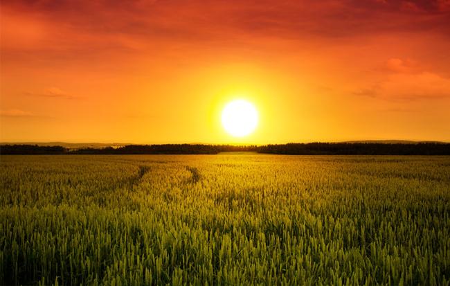 unnamed file 135 - Tả cảnh mặt trời mọc lớp 6 mới nhất