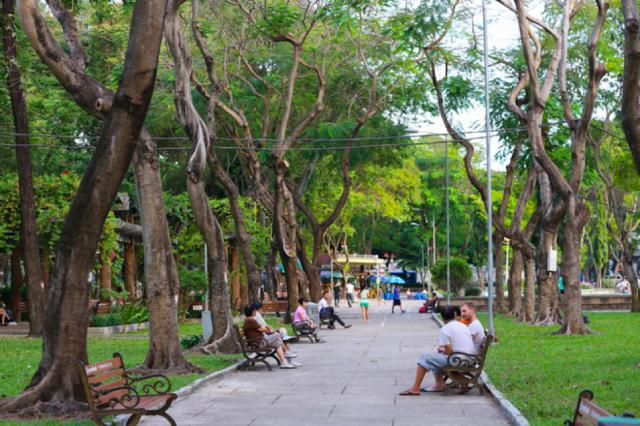 unnamed file 5 - Tả cảnh công viên vào buổi sáng lớp 6